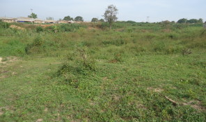 Bare Land at Orile-Iganmu, Lagos.
